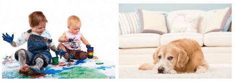 carpet-cleaning-rotherham-kids-dog-stains